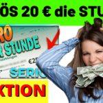 Geld verdienen im Internet | SERIÖS 20€ in EINER STUNDE | testbird erfahrungen